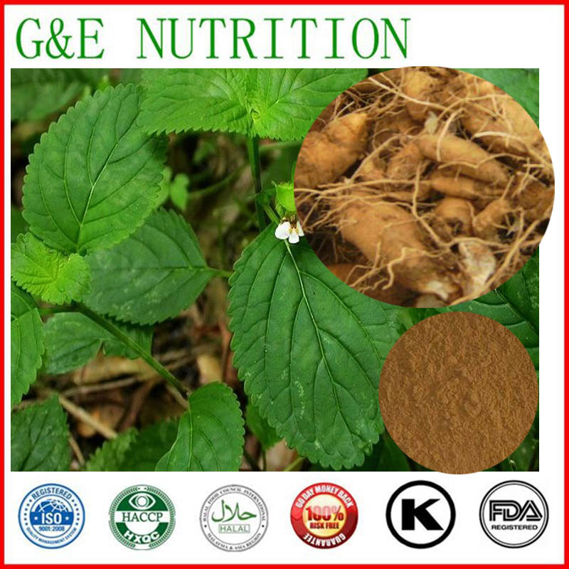 200g New Arrival Figwort Root/ Scrophularia ningpoensis/ Radix Scrophulariae/ rootoffigwort Extract with free shipping<br><br>Aliexpress