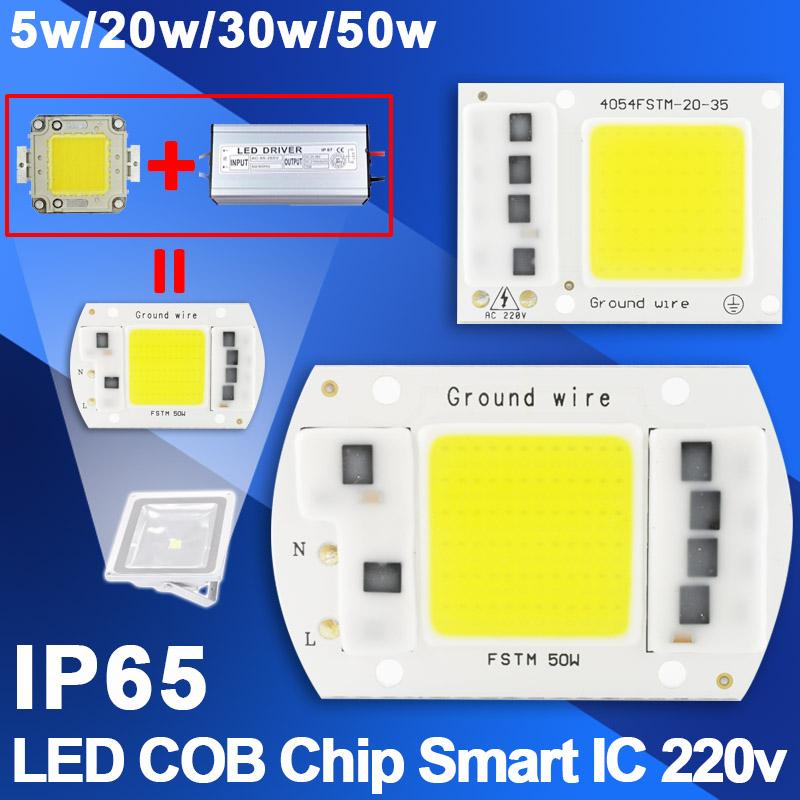 10Pcs COB LED Lamp Chip 5W 20W 30W 50W LED COB Bulb Lamp 220V IP65 Smart IC Driver Cold Warm White LED Spotlight Floodlight Chip
