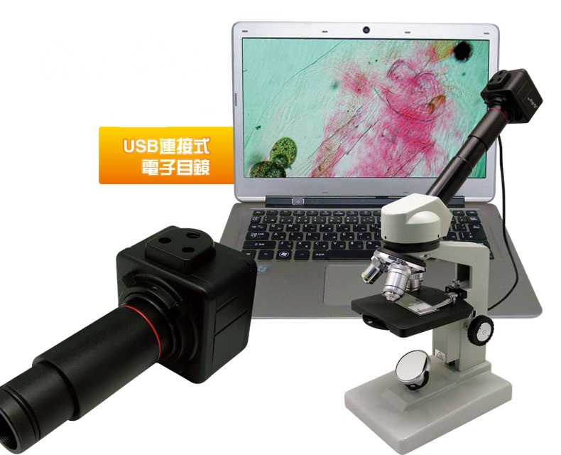 5.0 MP USB Video CCD Camera with C-Mount 0.5X Eyepiece Adapter 23.2mm 30mm 30.5mm Relay Lens Digital Electronic Eyepiece<br><br>Aliexpress