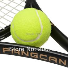 (10pcs/lot) FANGCAN High Brand Quality Competition Tennis Ball, Yellow Professional Training Ball, High Rebounce Sports Ball(China (Mainland))