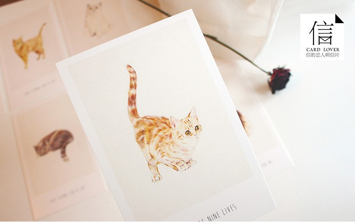 Гаджет  Vintage live like a cat Animal post card Cute 14 pcs/lot Greeting wishes card Christmas Card None Офисные и Школьные принадлежности