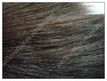 Best quality raw virgin chinese italian yaki hair(China (Mainland))