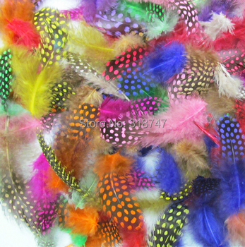 about 5-12cm Random mixed colors Chicken pheasant feathers beautiful gull feather plume decoration accessories 24pcs 077007