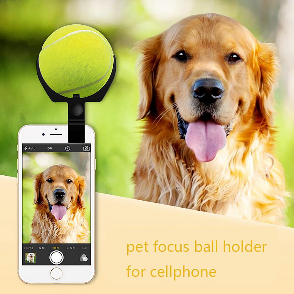 Pet photo focus ball holder clip on the cellphone dog cat selfie helper eyes on the camera tennis holder on mobile phone L45(China (Mainland))