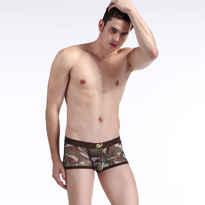 Mini Mesh See Through Penis Male Panties Sexy Sheer Men boxer shorts transparent mens sexy gay