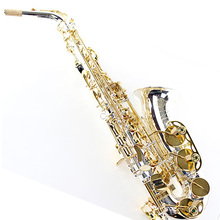 Selmer SAS-54 Alto Silver Plated Surface Gold plated Key Carved Print Eb saxophone, e-flat sax mouthpiece,case,reeds,gloves - Western Musical Instruments Store store
