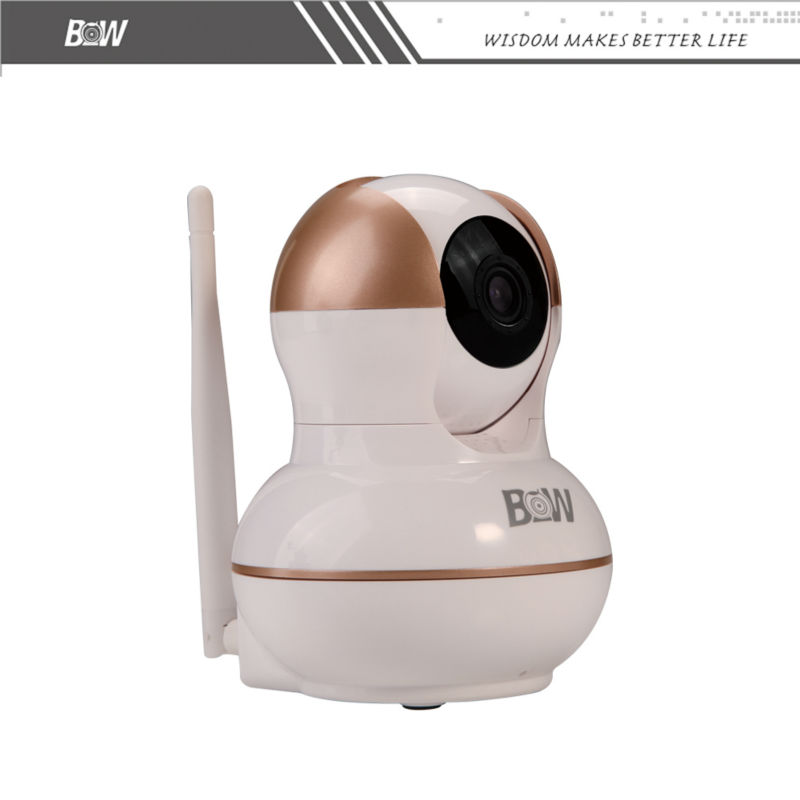 ONVIF PTZ P2P IP Camera 720P HD Wireless Baby Monitor Alarm Security CCTV Cloud Night Vision Wifi Camera Micro SD Card BWIPC012G(China (Mainland))