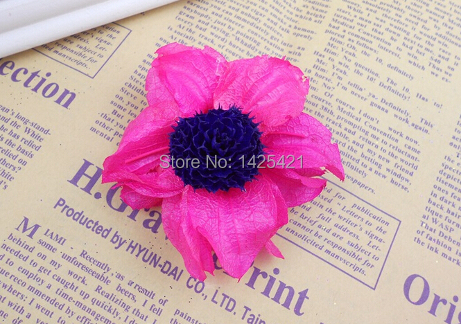 50pcs Sale!!! Rose Pink Dried Hibiscus flowers PreservedFreshFlower Wedding Decor DIY artificial flowers Eco-Friendly flowers(China (Mainland))