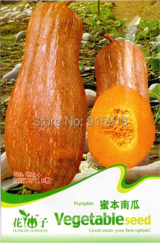 Buy 2 Get 1!(Can accumulate ) 1Pack 8+ Seeds Heirloom Healthy Organic Vegetable Pumpkin Seeds C044(China (Mainland))