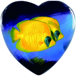 Yellow Fish Pendant, Fish Necklace, Fish Jewelry, Heart, Gift, Fish Heart Necklace Glass Photo Cabochon Necklace(China (Mainland))