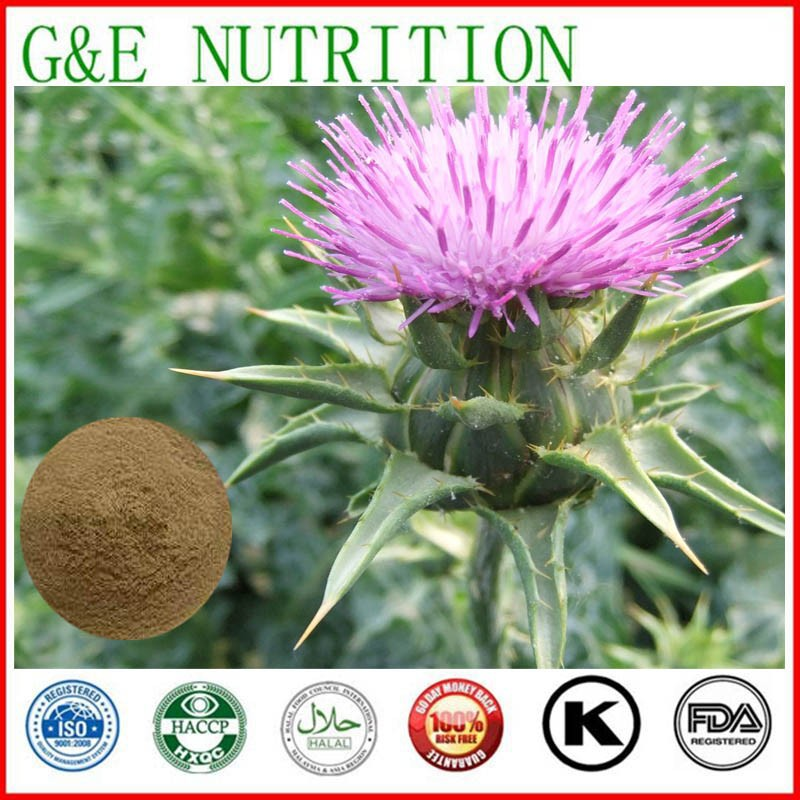 ISO/HACCP factory supply Liver health milk thistle extracts powder 10:1 400g(China (Mainland))