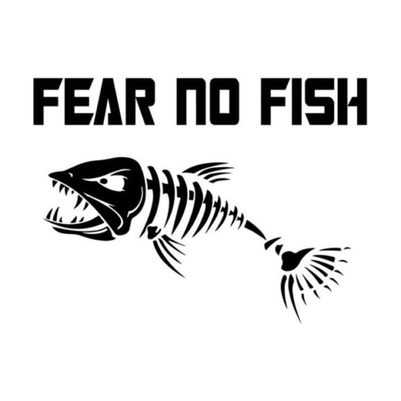 Color changing window tint promotion shop for promotional for Fear no fish