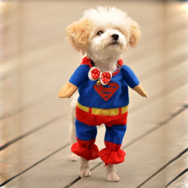 New New Hot Superman Pet Dog Jumpsuit Suit Set Puppy One Piece Apparel Clothes Costumes Party Dress(China (Mainland))