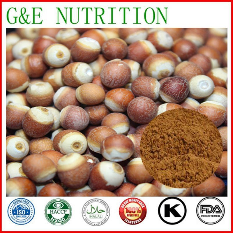 Hot sell Natural Gorgon fruit Extract 1000g<br><br>Aliexpress