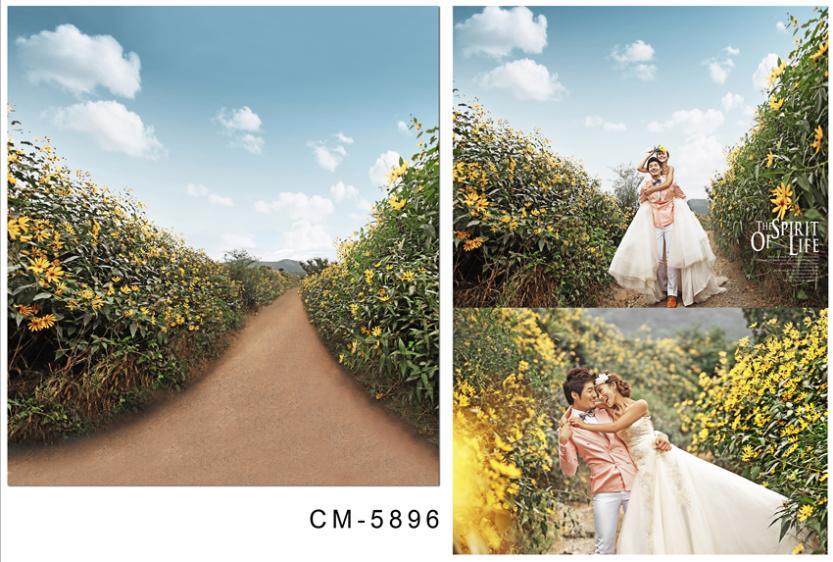 3M*6M(10FT*20FT)Blue flower trail photography backdrops seniorWedding backgroundcm-5896<br><br>Aliexpress