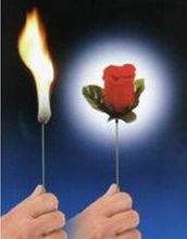 2pieces Torch to rose is simple and easy to learn magic magic props romantic funny strange new creative toys(China (Mainland))