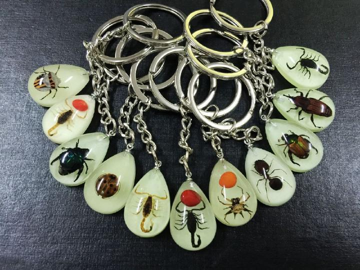 FREE SHIPPING 16 PCS Real Beetle Bug Scorpion mix Insect Keychains Glow Drop Shape Keychain(China (Mainland))