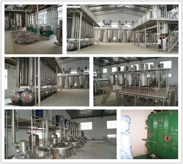 700g Lowest price Ginkgo/ Ginkgo Biloba/ Folium ginkgo Extract with free shipping