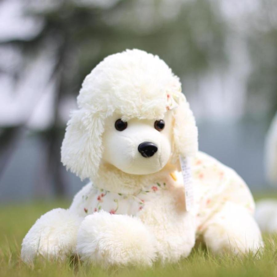 Piccolo giocattolo barboncino acquista a poco prezzo - Barboncino piccolo ...