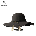 COSPLACOOL Hot New Autumn Hats For Women Lady With Wide Brim Wool Felt Bowler Fedora