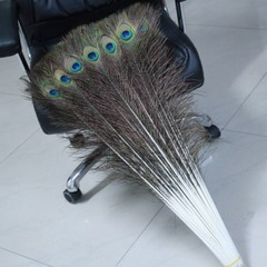 Peacock feather furniture wedding props supplies accessories material