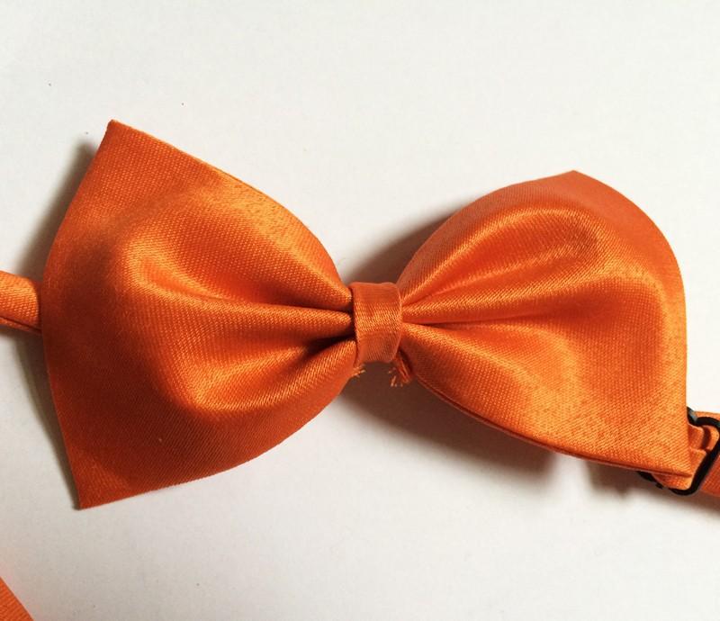 dog bows orange