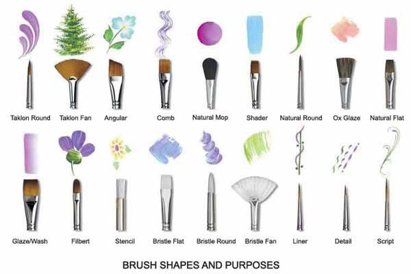 paint-brush-shapes-and-purposes