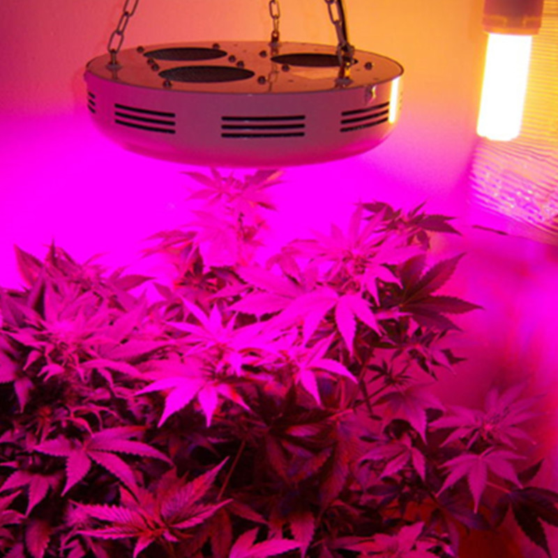4pcs/lot 90w high power plants growing lights ufo led grow light for indoor greenhouse growing with 7 bands full spectrum(China (Mainland))