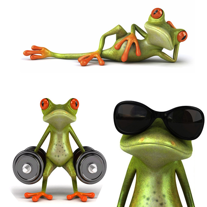 New arrival 3D Frogs Funny Car Stickers car styling vinyl decal sticker decoration High temperature water