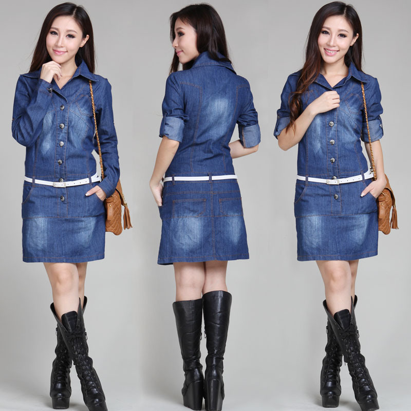 Denim Dresses And Skirts | Jill Dress