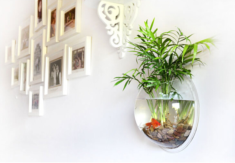 Round wall hydroponic wall glass vase home decoration for Vase aquarium rond