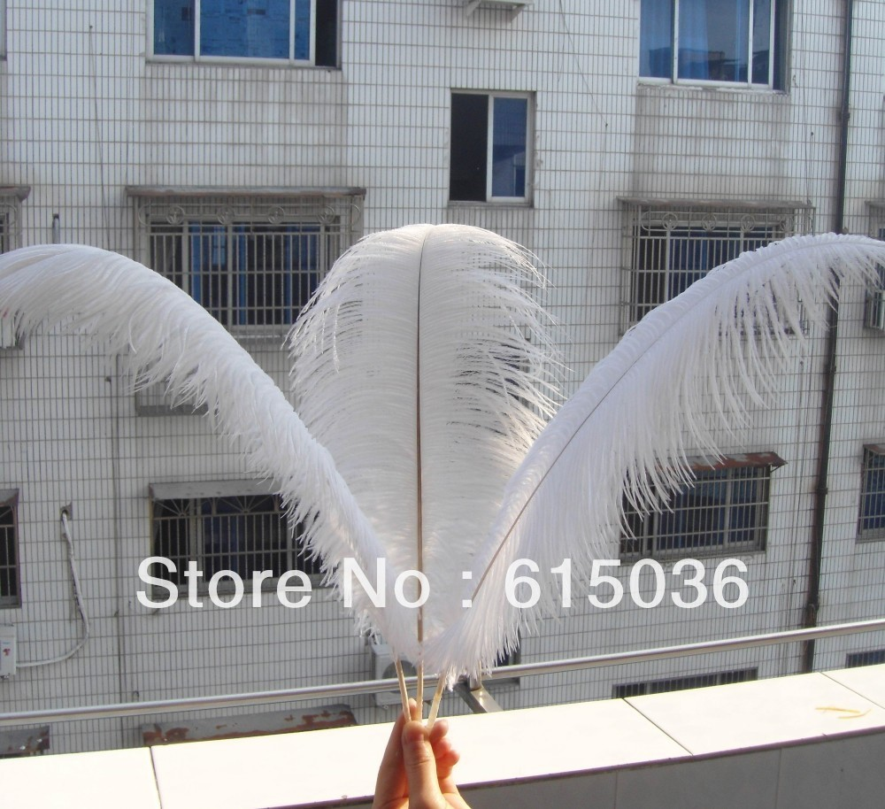 "Wholesale 20pcs/lot 12-14"" White Ostrich Feather Plume FREE SHIPPING wedding decoration(China (Mainland))"