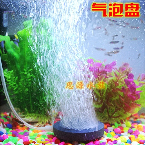 Hydroponics pond promotion shop for promotional for Fish pond hydroponics