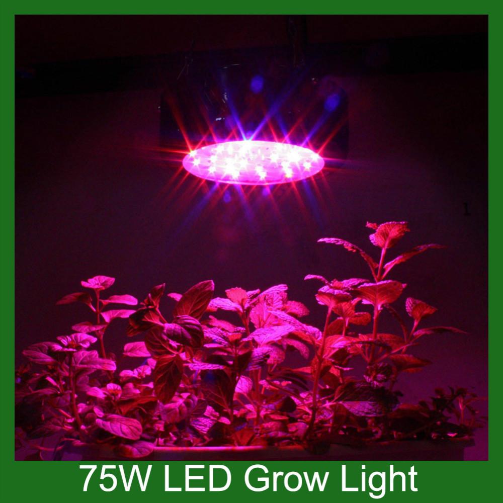 Mini UFO 75 W cresce a luz LED espectro total 660nm planta crescer luz da lâmpada de jardim interior crescer(China (Mainland))