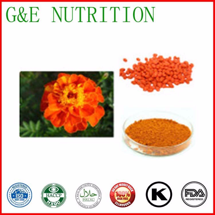 high quality lutein, marigold flower extract 100g(China (Mainland))