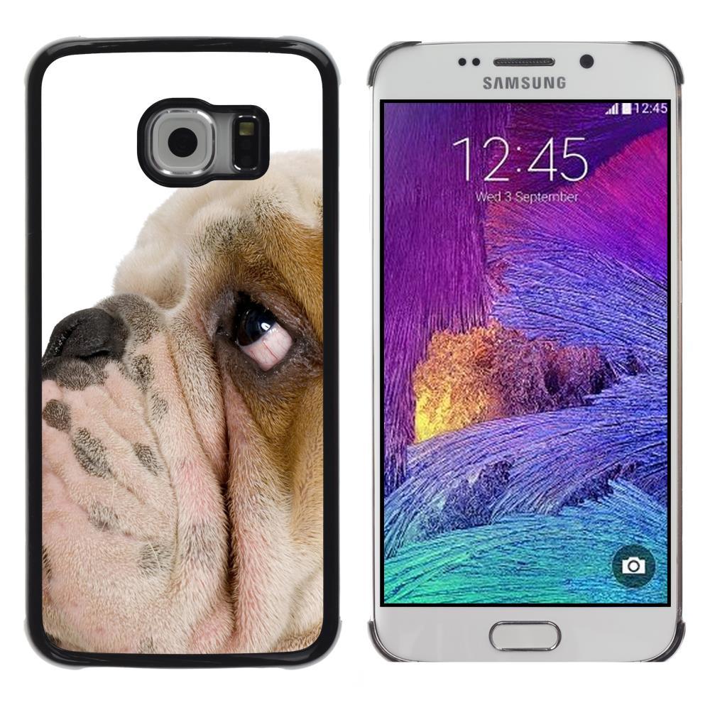 Snap On Hard PC Back Shell Case For Samsung Galaxy S6 EDGE SM-G925-English Bulldog British Breed Dog Puppy(S6EDGE-3005529)(China (Mainland))