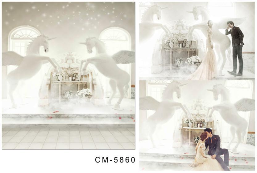 3M*6M(10FT*20FT)Pegasus white walls and floors photography backdrops seniorWedding backgroundcm-5860<br><br>Aliexpress