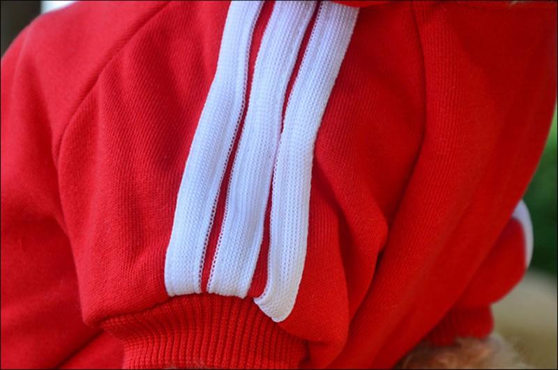 dog's cloth 80px-S22
