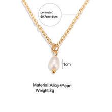 17 KM מעטפת פרל לולאות שרשראות לנשים זהב רסיס אופנה רב שכבה ארוך שרשראות & תליוני Bijoux תכשיטים בוהמיים(China)