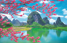 Canvas painting,wall pictures for living room,wall art,According to the buyer to provide pictures of paintings(China (Mainland))