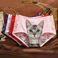 Sexy Kitty Underwear Women Erotic Transparent Panties Cute 3d Cat Print Comfortable Low rise Lace Briefs