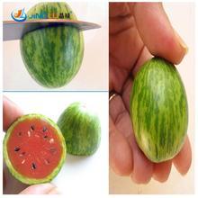 Thumb Watermelon Seeds Mini Watermelon Peipujinun 20pcs/bag Vegetable Seeds Indoor Plant Thumb Watermelon Seeds Mini Watermelon