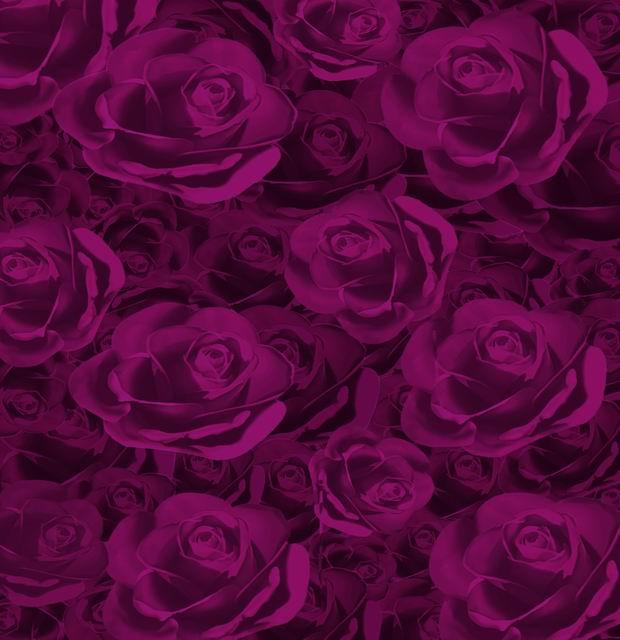 10*6.5feet(300*200cm) photography backdrops fotografia Purple Rose Love(China (Mainland))