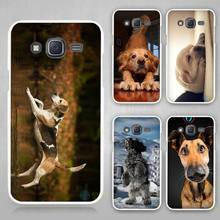 Buy dog Hard White Case Cover Samsung Galaxy J1 J2 J3 J5 J7 C5 C7 C9 E5 E7 2016 for $1.49 in AliExpress store