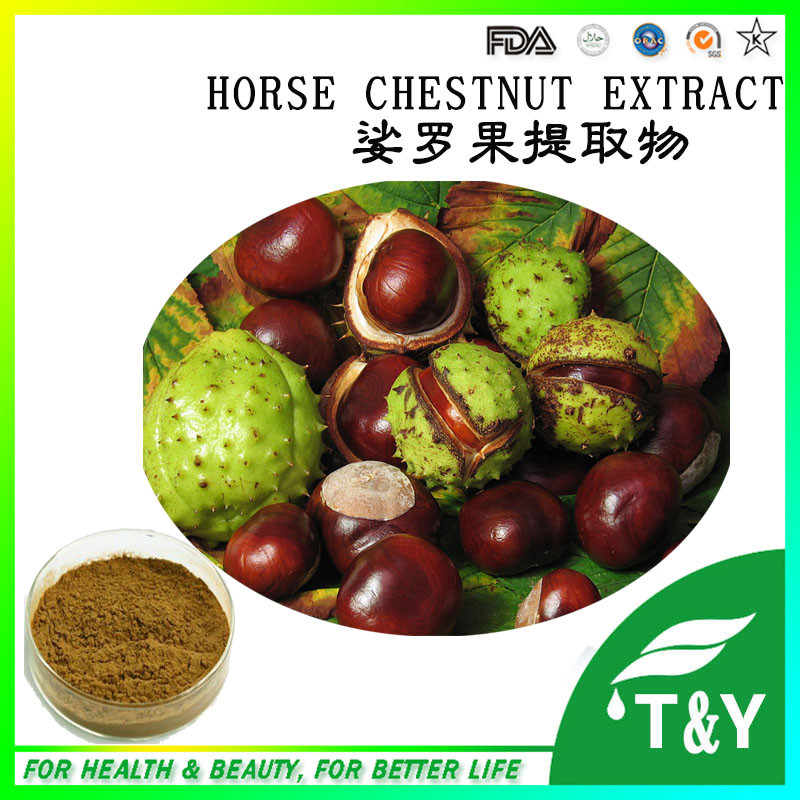 Pure natural 20% Aescin Horse Chestnut Horse Chestnut Plant Extract<br><br>Aliexpress