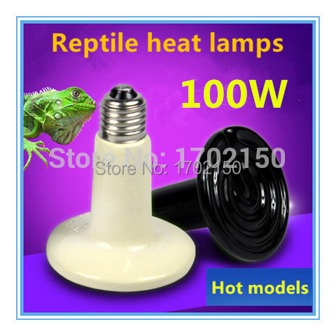 Free shipping Hot models Heat lamps Pet Heater Snake Tortoises Lizard Hedgehog heating equipment Reptile supplies wholesale(China (Mainland))
