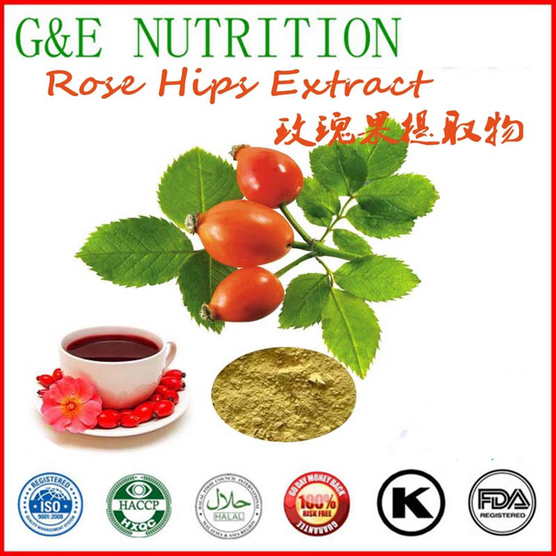 Low Price Rose Hips Extract with free shipping 800g<br><br>Aliexpress