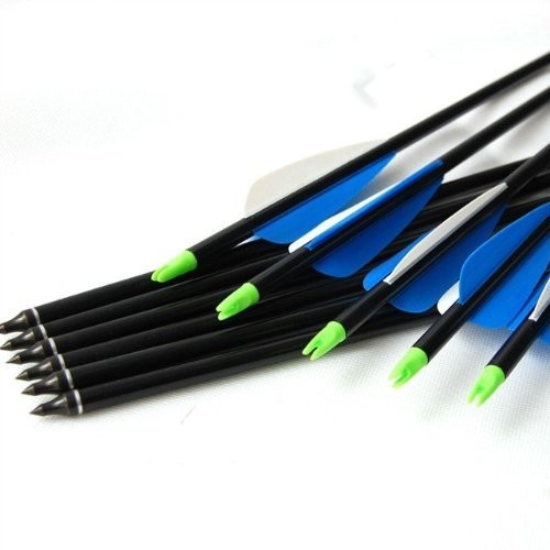 12pcs pack 30 Inches Archery Shooting Compound Bow Fiberglass Arrows with Fiberglass Shaft and Steel Point