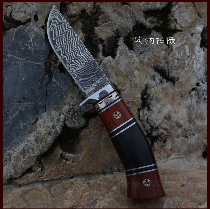 Buy High Quality Damascus Steel Fixed Blade Hunting Knife Camping Tactics Survival Knife 58HRC EDC Tool Best Gift Free Shipping cheap