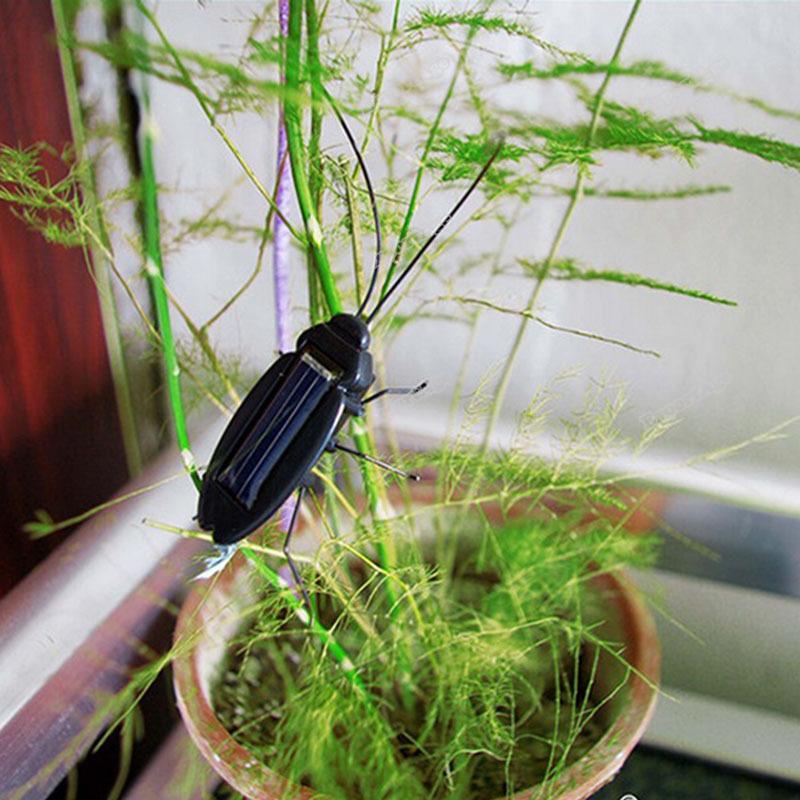 LidaBack Wonderful! Solar Power Energy Black Cockroach Bug Toy Children Latest!(China (Mainland))